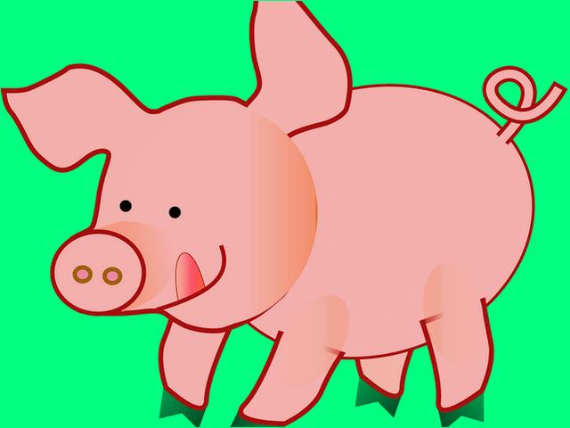 svinya